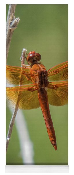 Dragonfly 10 Yoga Mat
