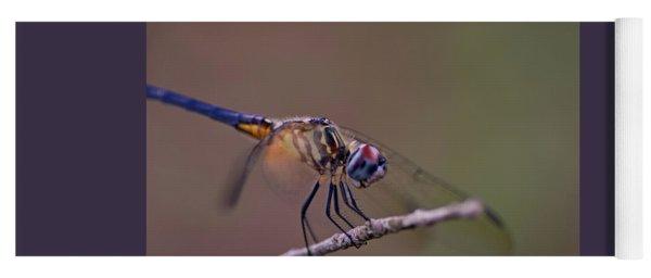 Dragonfly On Twig Yoga Mat