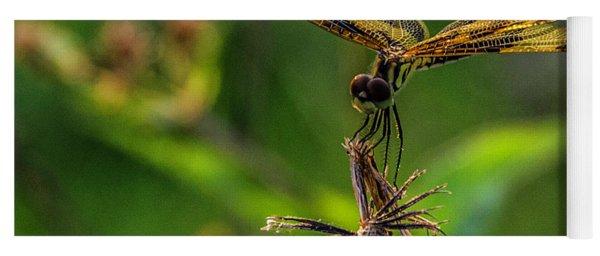Dragonfly Resting On Flower Yoga Mat