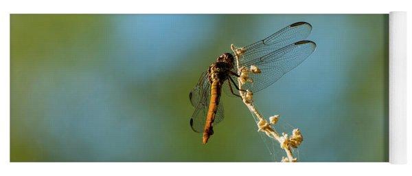 Dragonfly Wings Yoga Mat
