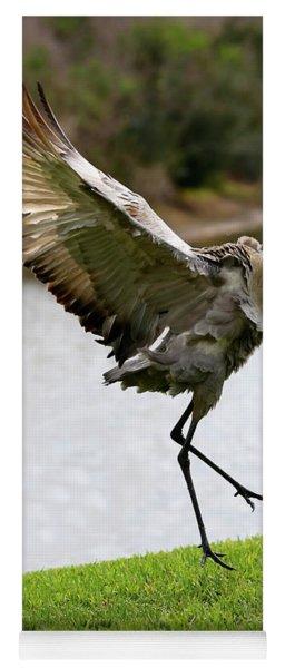 Dramatic Sandhill Crane Leap Yoga Mat