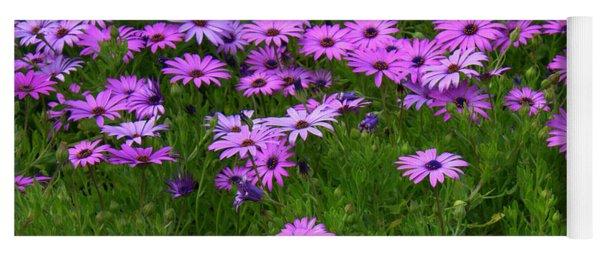 Dreaming Of Purple Daisies  Yoga Mat