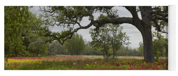 Drummonds Phlox Meadow Near Leming Texas Yoga Mat