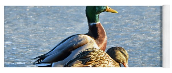Duck Pair On Frozen Lake Yoga Mat