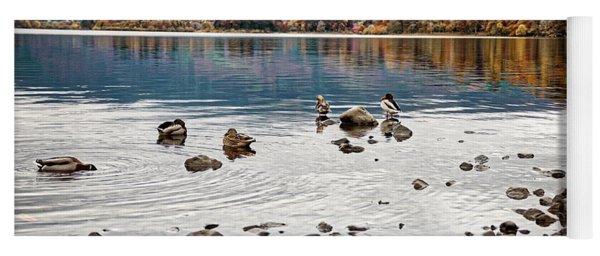 Ducks On Derwent Yoga Mat
