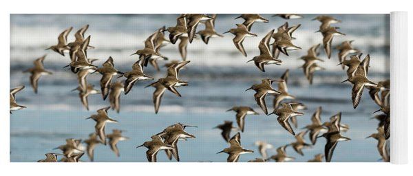 Dunlin Flock Yoga Mat