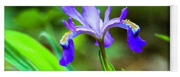 Dwarf Crested Iris Yoga Mat