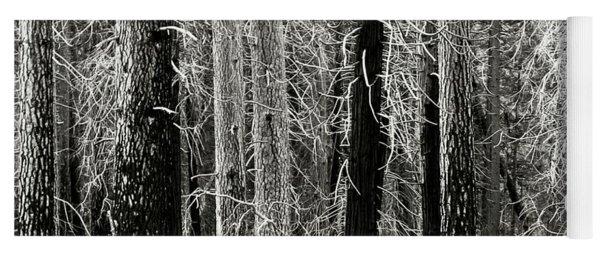 Dying Trees In Yosemite Yoga Mat