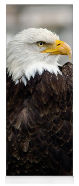 Eagle Yoga Mat