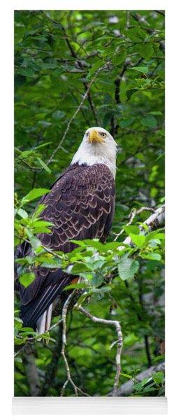 Eagle In Tree Yoga Mat