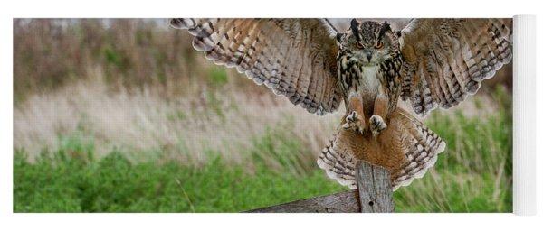 Eagle Owl On Signpost Yoga Mat
