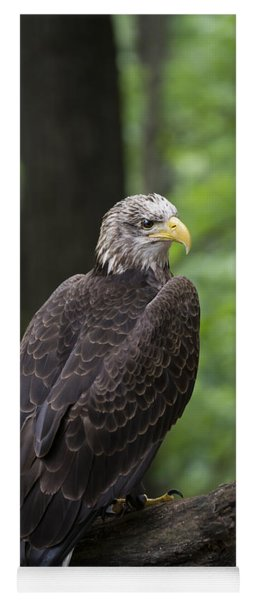 Eagle Portrait Yoga Mat