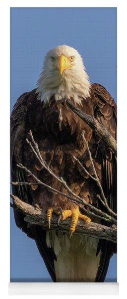 Eagle Stare Yoga Mat
