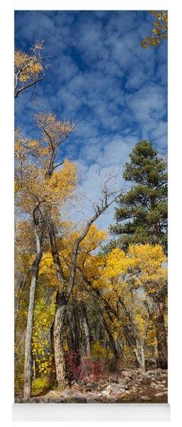 Early Autumn On The Creek Yoga Mat