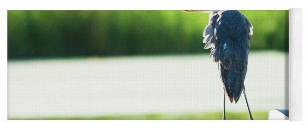 Early Morning Great Blue Heron Yoga Mat
