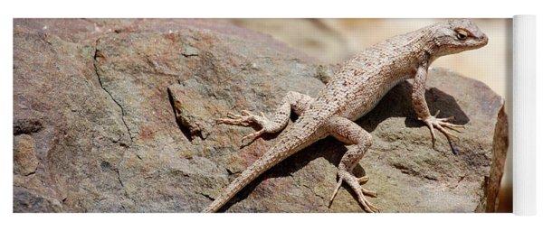 Eastern Fence Lizard, Sceloporus Undulatus Yoga Mat