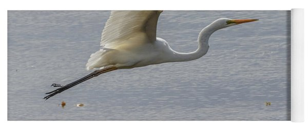 Eastern Great Egret 03 Yoga Mat