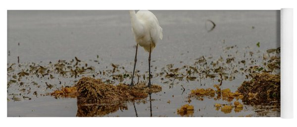 Eastern Great Egret 05 Yoga Mat
