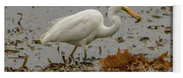 Eastern Great Egret 10 Yoga Mat