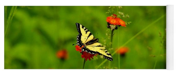 Eastern Tiger Swallowtail  Yoga Mat