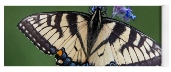 Eastern Tiger Swallowtail Wingspan Yoga Mat