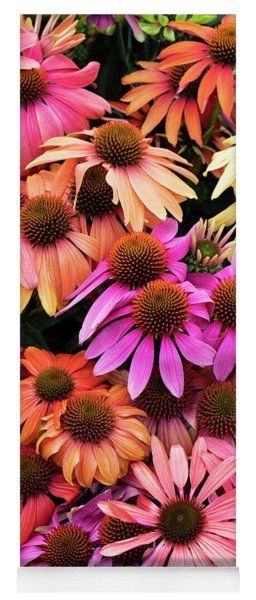 Echinacea Colour Yoga Mat