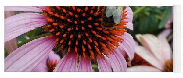 Echinacea Tea Time For Bee Yoga Mat
