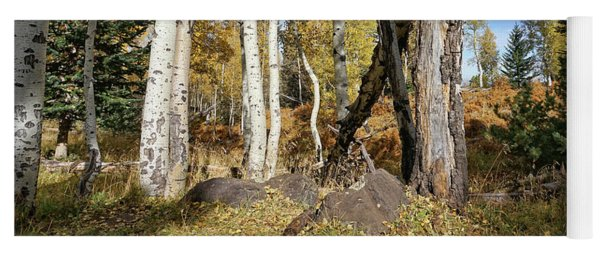 Edge Of The Woods Yoga Mat