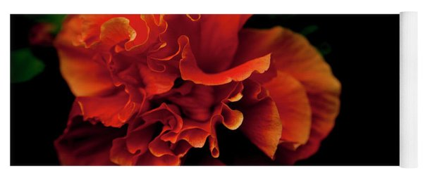 Yoga Mat featuring the photograph Efflorescence by Eric Christopher Jackson