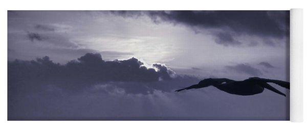 Pelican At Sunrise Yoga Mat