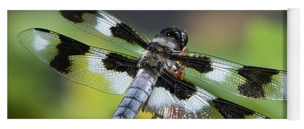 Eight-spotted Skimmer  Yoga Mat