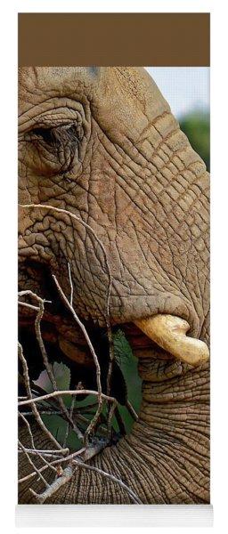 Elephant Curl Yoga Mat