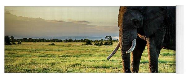 Elephant Near Mt Kenya Yoga Mat