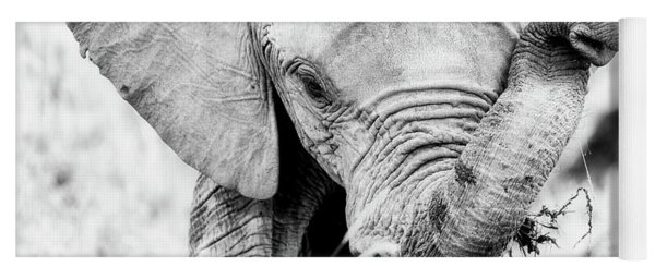 Elephant Portrait In Black And White Yoga Mat