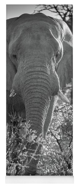 Elephant Portrait Yoga Mat