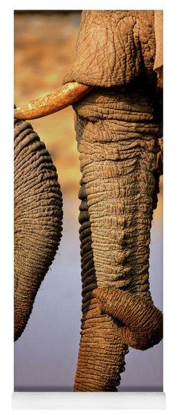 Elephant Trunks Interacting Close-up Yoga Mat