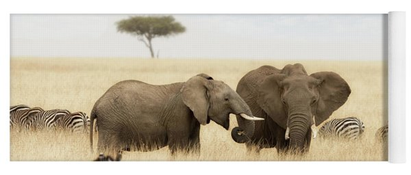 Elephants And Zebras In The Grasslands Of The Masai Mara Yoga Mat