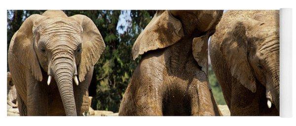 Elephants Yoga Mat