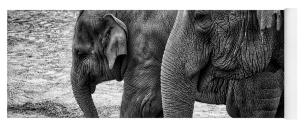 Elephants Bw Yoga Mat