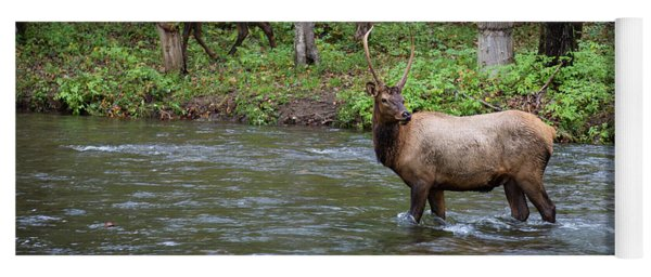 Elks By The Stream Yoga Mat