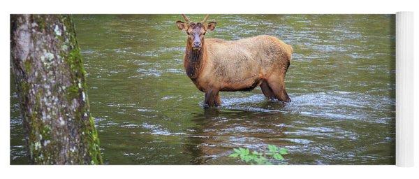 Elk In The Stream Yoga Mat