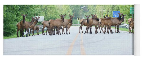 Elk Meeting Yoga Mat
