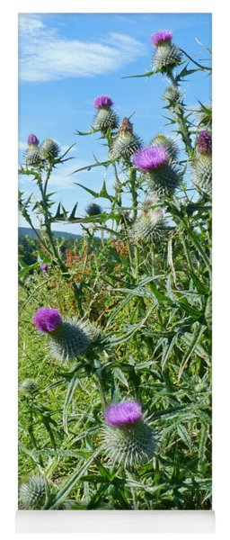 Emblem Of Scotland - The Spear Plume Thistle Yoga Mat