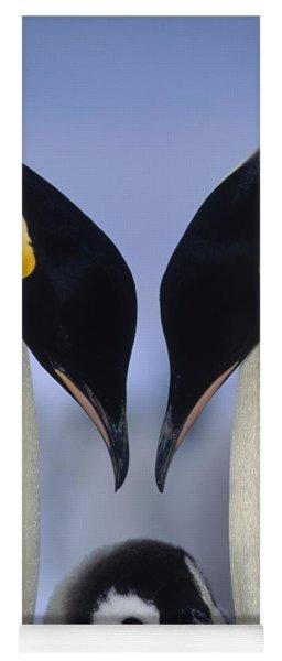 Emperor Penguin Family Yoga Mat