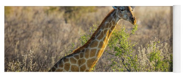 Etosha Giraffe Yoga Mat