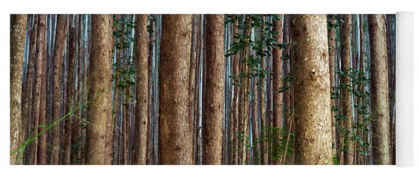 Eucalyptus Forest Yoga Mat