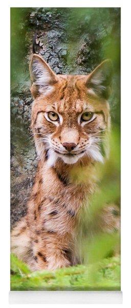 Eurasian Lynx Yoga Mat