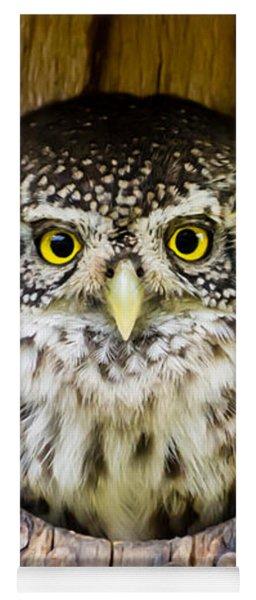Eurasian Pygmy Owl Yoga Mat