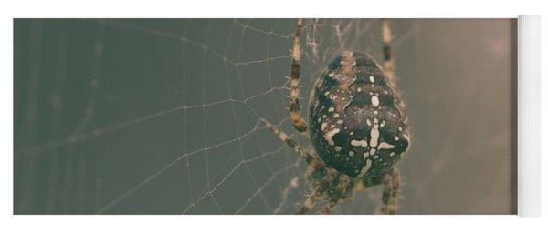 European Garden Spider B Yoga Mat