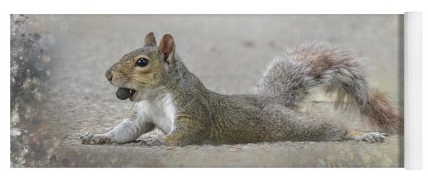 Exhausted Squirrel Yoga Mat